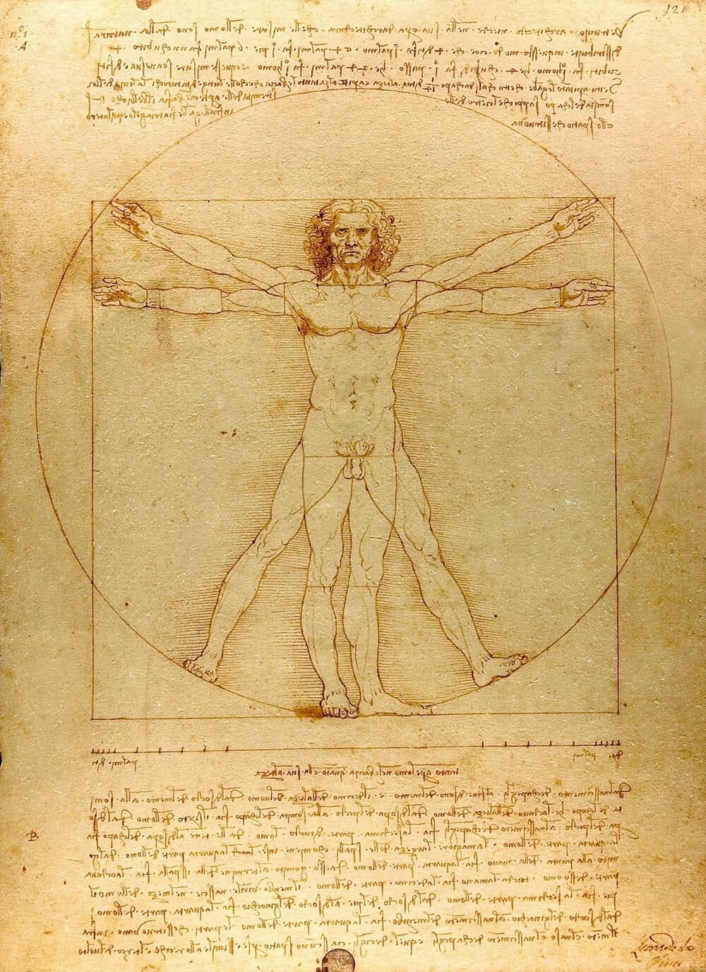 ภาพ 'Vitruvian Man' หนึ่งในผลงานของเลโอนาร์โด ดา วินชี ที่แสดงความเชื่อมโยงระหว่างศิลปะและวิทยาศาสตร์ ที่มา: wikipedia